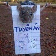 Tham Khảo